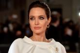 Angelina Jolie trabajará en un nuevo filme.