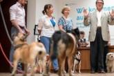 Para todo amante canino: Museo de Berlín abre sus puertas a visitantes ¡con PERROS!