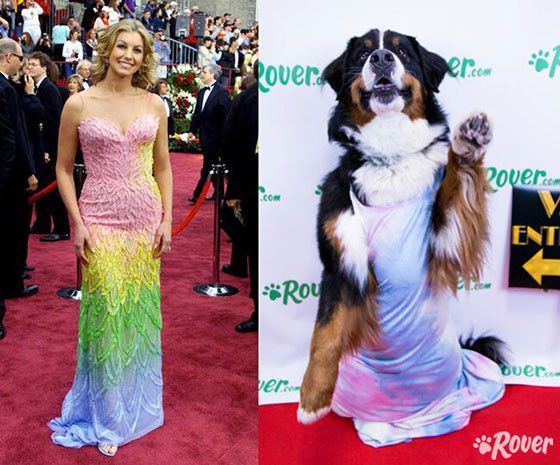 rs_560x465-160225102527-560-Oscar-Dogs-J4R-022516 (1)