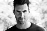 Adam Levine quiere enfocarse en otra cosa