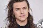 El padre de Harry Styles confirma que su hijo será actor