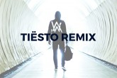 "Tiësto comparte sus dos remixes de ""Faded"""