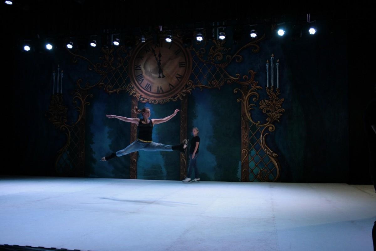 Ballet de Moscú sobre Hielo: Sectores y precios