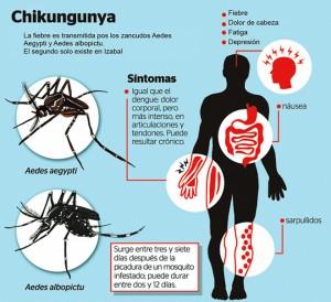 sintomas-chikungunya