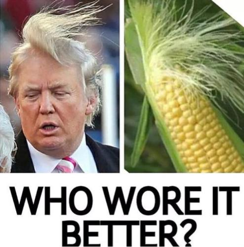 trump-vs-corn-who-wore-it-better-meme