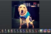 Algunas apps para retocar tus fotos desde el móvil