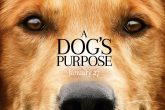 Cancelan el estreno de Dog's Purpose por maltrato animal
