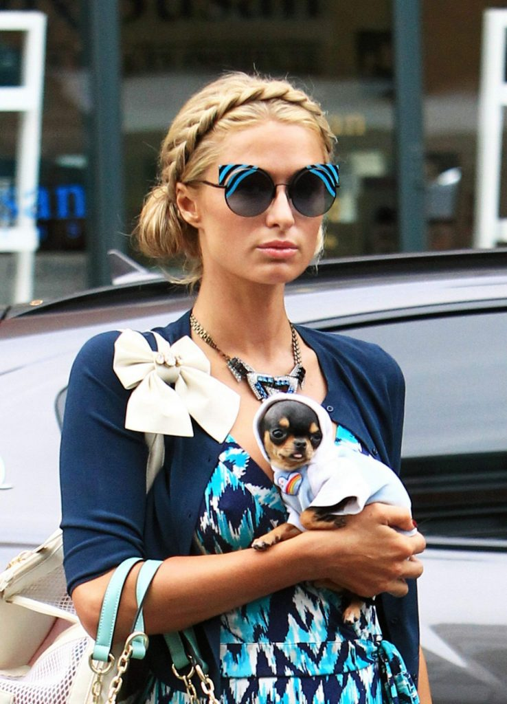paris-hilton-with-her-puppy-out-in-beverly-hills-1-3-2017-1