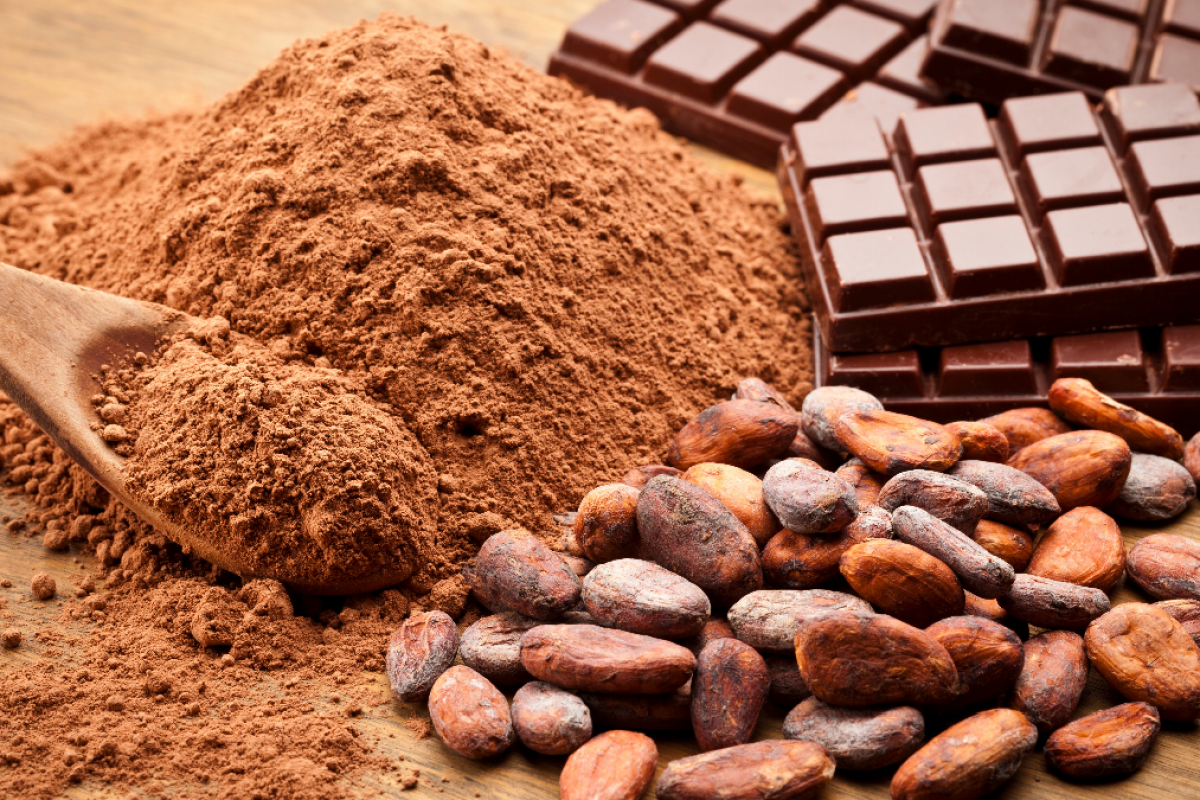 Chocolate ayuda a mantener la memoria activa