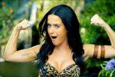 """Katy Perry """"noquea"""" a un fan que grababa su concierto con el celular"""