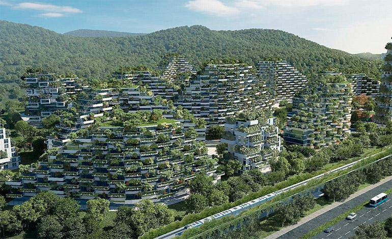 ciudad-forestal-1