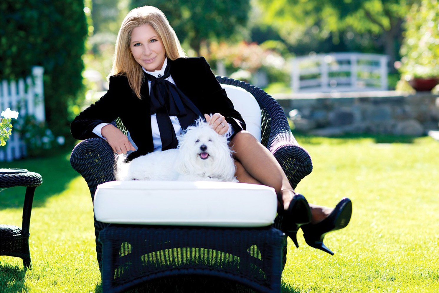 Barbra-Streisand-Dog-Clone