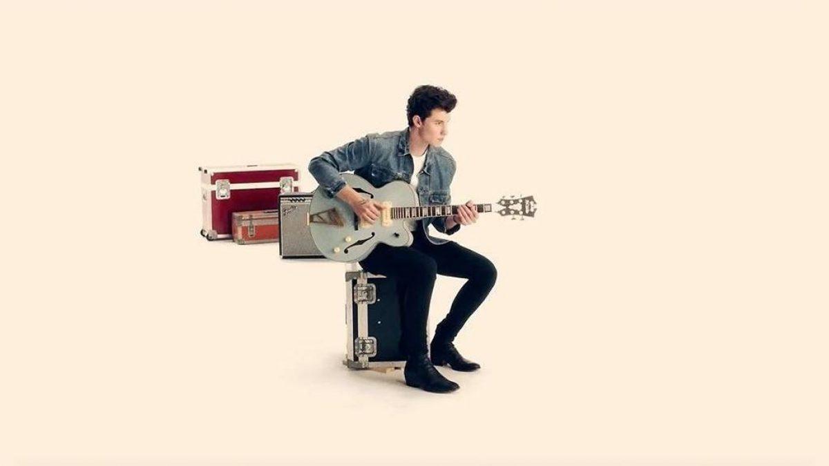 El nuevo videoclip de Shawn Mendes hará que desees acariciarlo