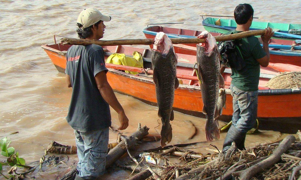 Hoy comienza veda pesquera