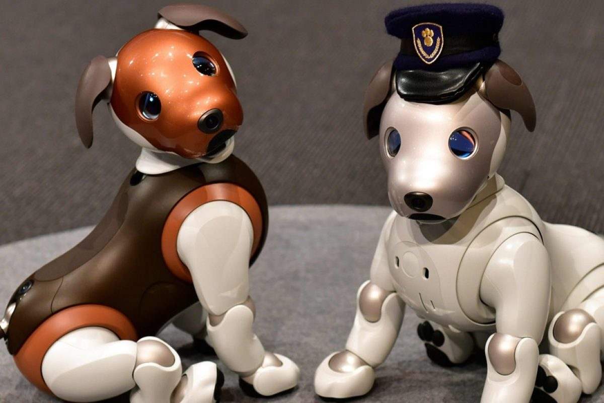 Sony lanzará nuevos perros robots, que llevarán el nombre de ¨Aibo Policial¨